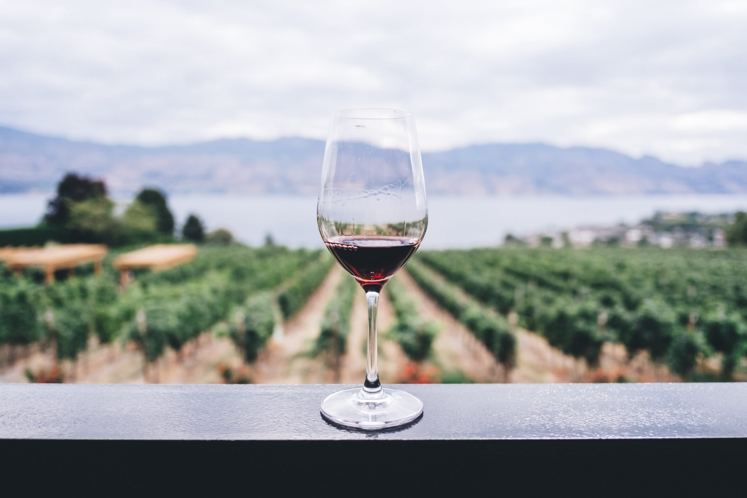 Black Owned Wineries You Have To See
