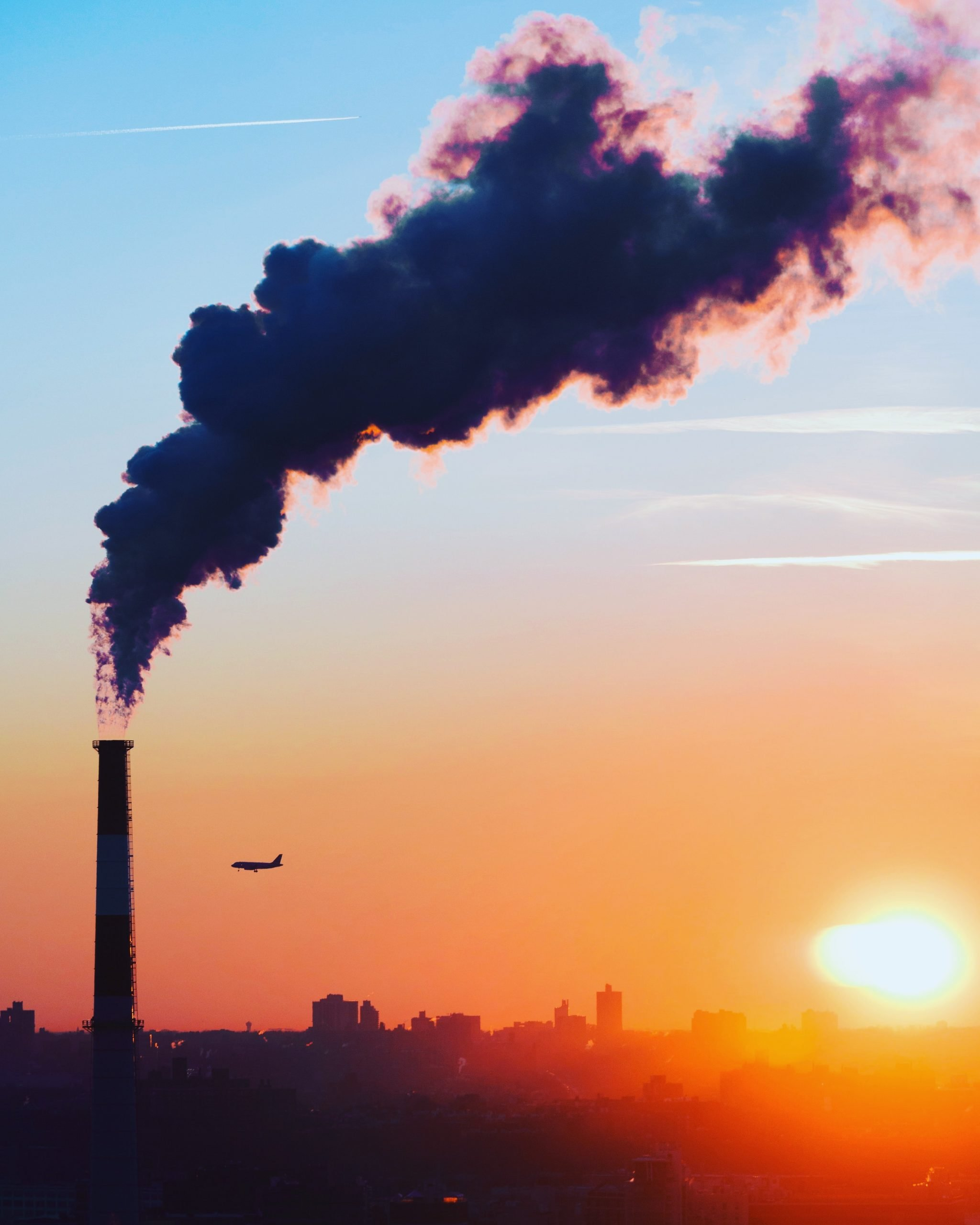 Environmental Changes around the World Amidst a Global Pandemic